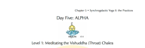DAY 5 ALPHA - L1